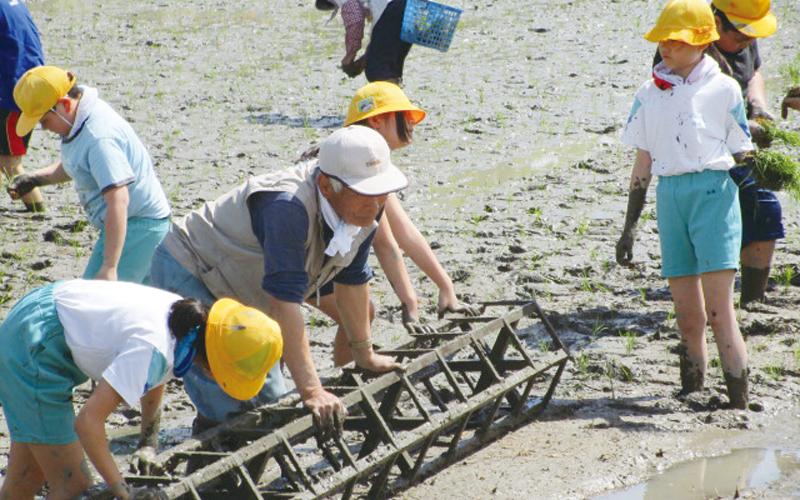 富山市立保内小学校<br /> 「米作り体験」