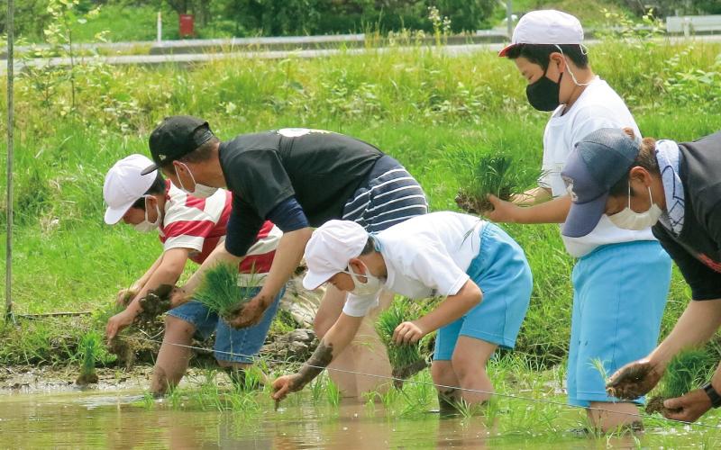 朝日町立宮宿小学校<br /> 「米作り体験」